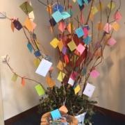 wensboom voor Laurens bij Arcus Fysiotherapie Zutphen
