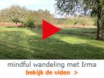 mindful wandeling met Irma Arcus Fysiotherapie Zutphen